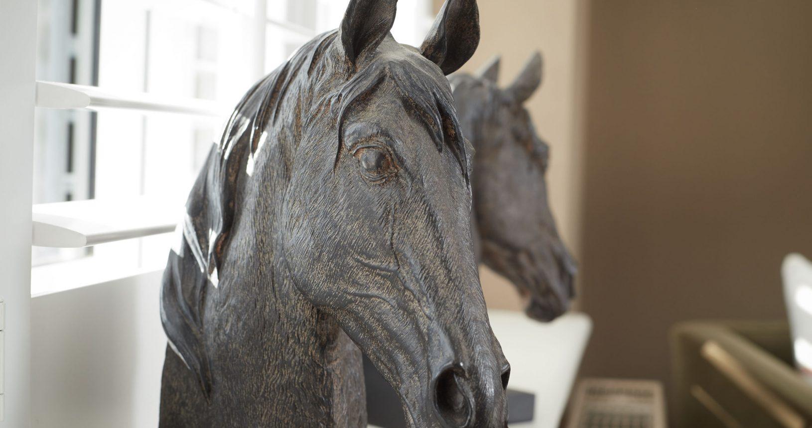 Horses at Annas House Thornham B&B